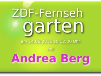 zdf fernsehgarten am 14.08.2016 mit andrea Berg