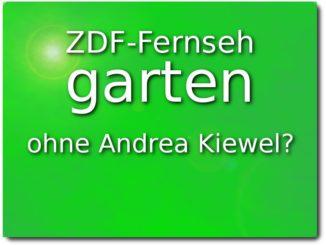 zdf fernsehgarten ohne andrea kiewel